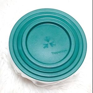 Tupperware Cannister Bowls with Lids and G…